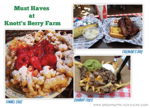 must haves at knotts berry farm copy