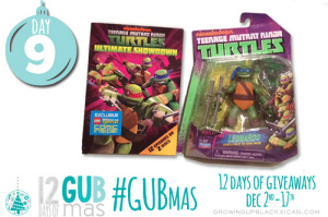 day nine giveaway_TMNT prize pack