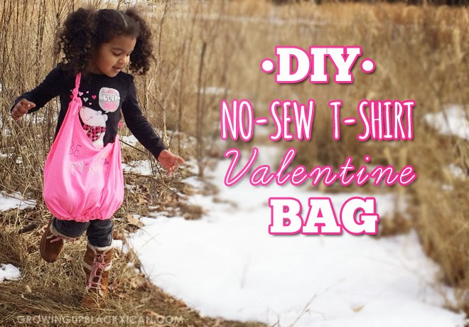 diy-no-sew-tshirt-valentine-bag_