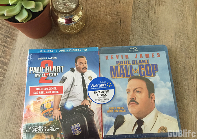 Family Movie Night- Mall Cop 2