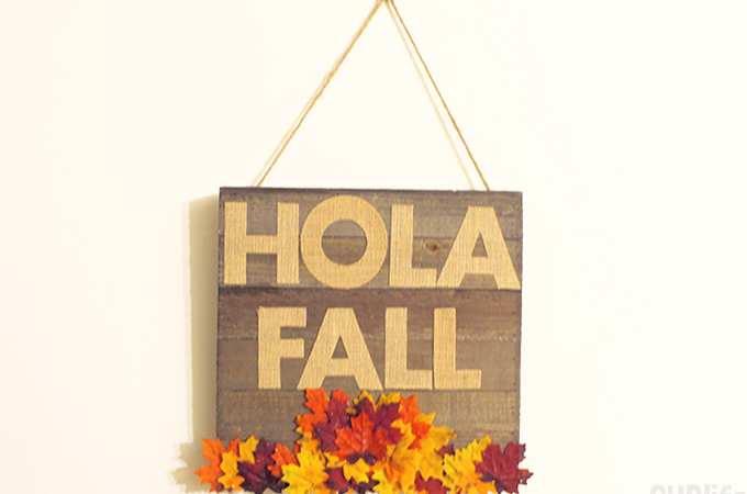 diy-fall-decor-hola-fall
