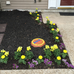 Easy Affordable Welcome Garden